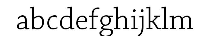 Chaparral Pro Light Subhead Font LOWERCASE