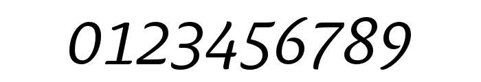 Ciabatta Light Italic Font OTHER CHARS