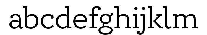 Circe Slab B Narrow Medium Font LOWERCASE