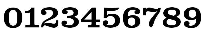 Clarendon Wide Medium Regular Font OTHER CHARS