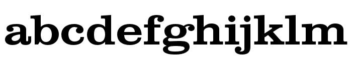 Clarendon Wide Medium Regular Font LOWERCASE