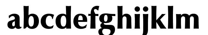 Classico URW Black Font LOWERCASE