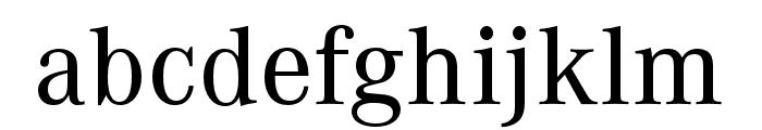 Corporate A Pro Medium Font LOWERCASE
