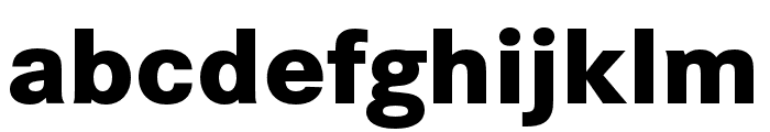 Corporate S Pro ExtraBold Font LOWERCASE