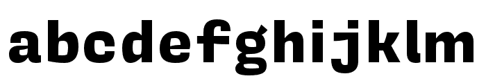 Covik Sans Mono Black Font LOWERCASE
