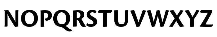 Cronos Pro Bold Display Font UPPERCASE