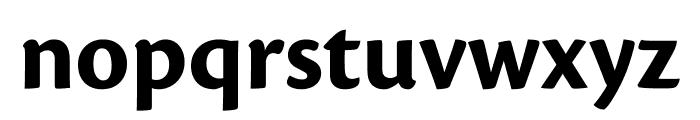 Cronos Pro Bold Display Font LOWERCASE