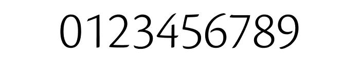 Cronos Pro Light Subhead Font OTHER CHARS