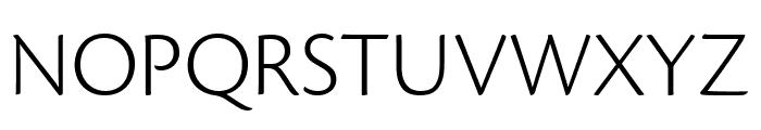 Cronos Pro Light Subhead Font UPPERCASE