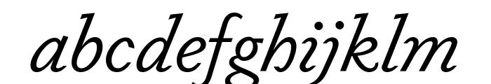 Dapifer BookItalic Font LOWERCASE