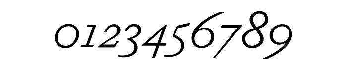 Dapifer LightItalic Font OTHER CHARS