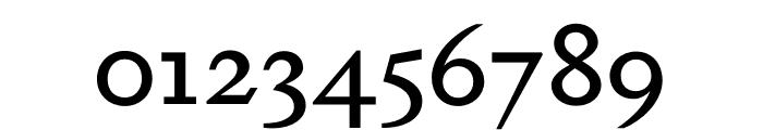 Dapifer Medium Font OTHER CHARS