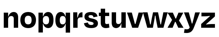Degular Bold Font LOWERCASE