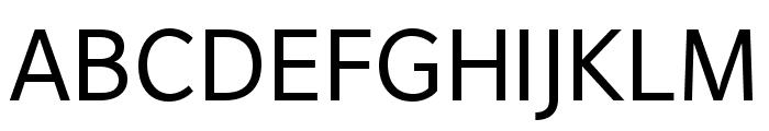 DejaRip Bold Italic Font UPPERCASE