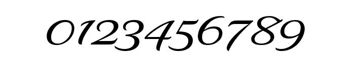 Delaney Regular Font OTHER CHARS