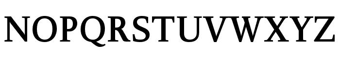 Delicato Pro Bold Font UPPERCASE