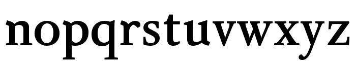 Delicato Pro Bold Font LOWERCASE