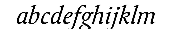 Delicato Pro Italic Font LOWERCASE