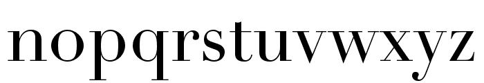 Didot LT Pro Headline Font LOWERCASE