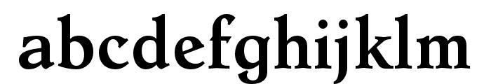 Dutch Mediaeval Pro Bold Font LOWERCASE