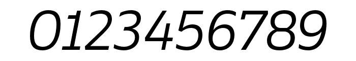 Ebony Light Italic Font OTHER CHARS