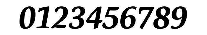 Expo Serif Pro Bold Italic Font OTHER CHARS