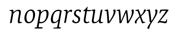 Expo Serif Pro Light Italic Font LOWERCASE