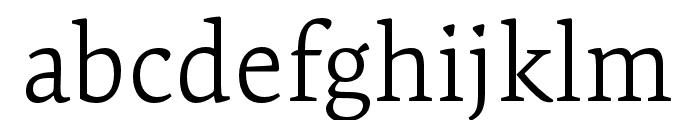 Expo Serif Pro Light Font LOWERCASE