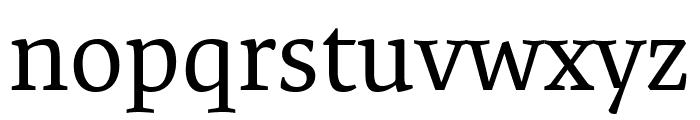 Expo Serif Pro Regular Font LOWERCASE