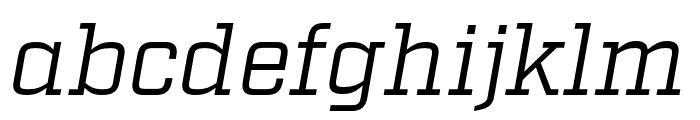 Factoria Book Italic Font LOWERCASE