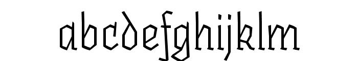 Fakir Pro Regular Italic Font LOWERCASE