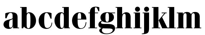 Fenice Pro ITC Bold Font LOWERCASE