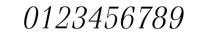Fenice Pro ITC Light Oblique Font OTHER CHARS