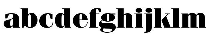 Fenice Pro ITC Ultra Font LOWERCASE