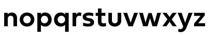 Fieldwork Hum DemiBold Font LOWERCASE