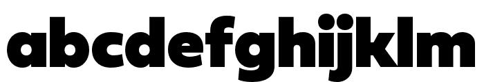 Fieldwork Hum Fat Font LOWERCASE