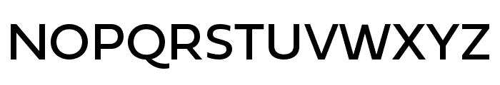 Fieldwork Hum Regular Font UPPERCASE