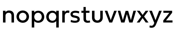 Fieldwork Hum Regular Font LOWERCASE