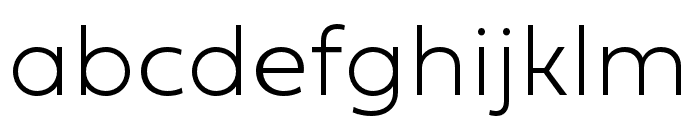 Fieldwork Hum Thin Font LOWERCASE