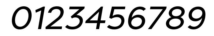 Filson Pro Regular Italic Font OTHER CHARS