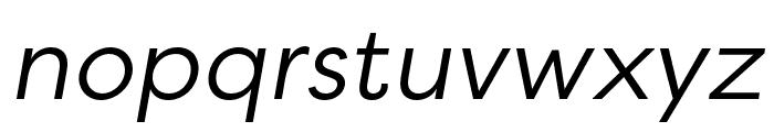 Filson Soft Book Italic Font LOWERCASE