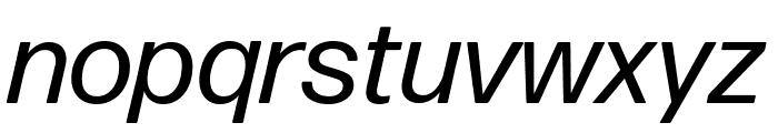 Forma DJR Text Italic Font LOWERCASE