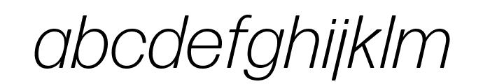 Forma DJR Text Light Italic Font LOWERCASE