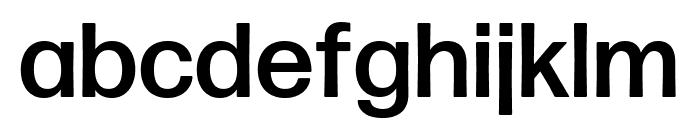 Forma DJR Text Medium Font LOWERCASE