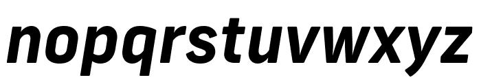 Frank New Bold Italic Font LOWERCASE