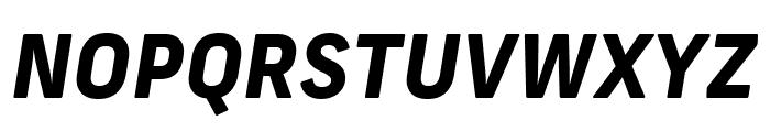 Frank New ExtraBold Italic Font UPPERCASE