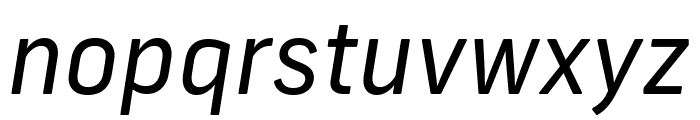 Frank New Regular Italic Font LOWERCASE