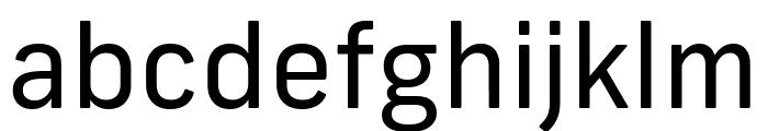Frank New Regular Font LOWERCASE