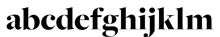 FreightMacro Pro Black Font LOWERCASE