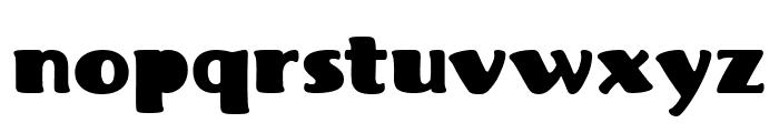Fritz Robusto Font LOWERCASE
